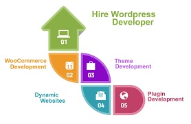 Hire-Wordpress-Developer-In-Usa--India.jpg